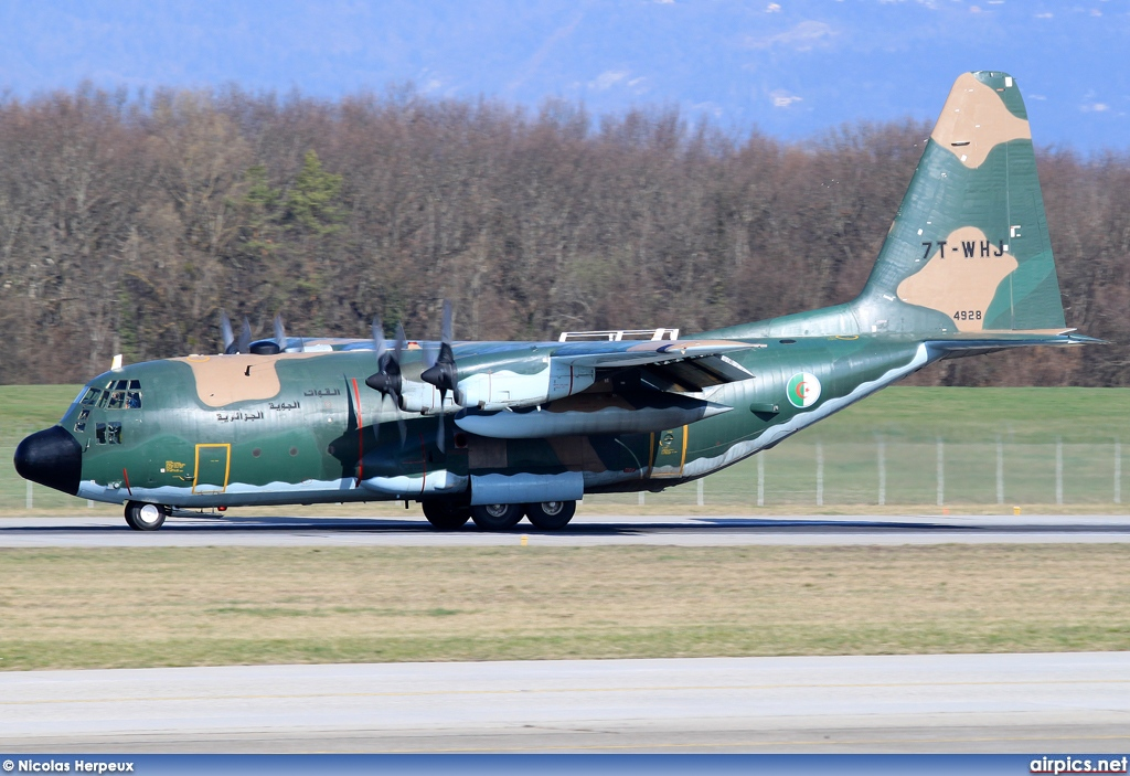 7T-WHJ, Lockheed C-130H Hercules, Algerian Air Force