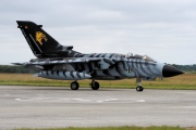 46-48, Panavia Tornado ECR, German Air Force - Luftwaffe