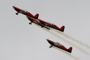 Extra 300-L, Royal Jordanian Falcons