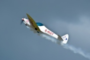 G-RIOT, Silence Twister, Swift Aerobatic Display Team