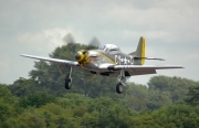 NX251RJ, North American TF-51D Mustang, Untitled