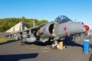 ZD463, British Aerospace Harrier GR.9A, Royal Navy - Fleet Air Arm